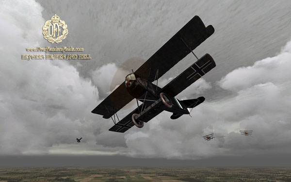 Fokkers. DVII with DrI support