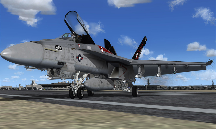 The VRS F/A-18E Superbug for FSX.