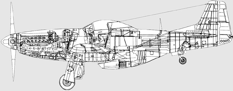 DCS: P-51D Mustang cutaway