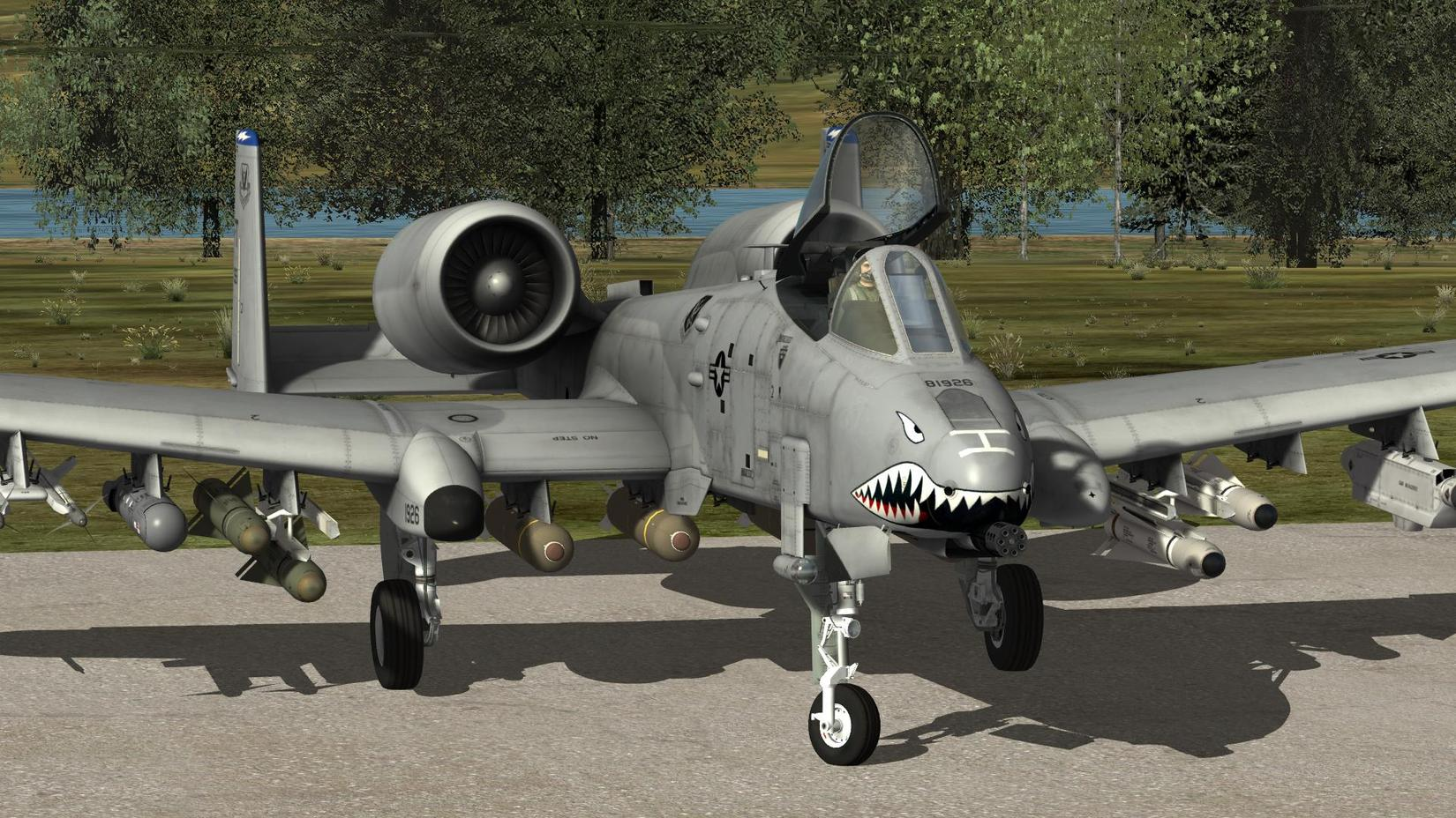 Some Ai aircraft from DCS A10 - SimHQ Forums