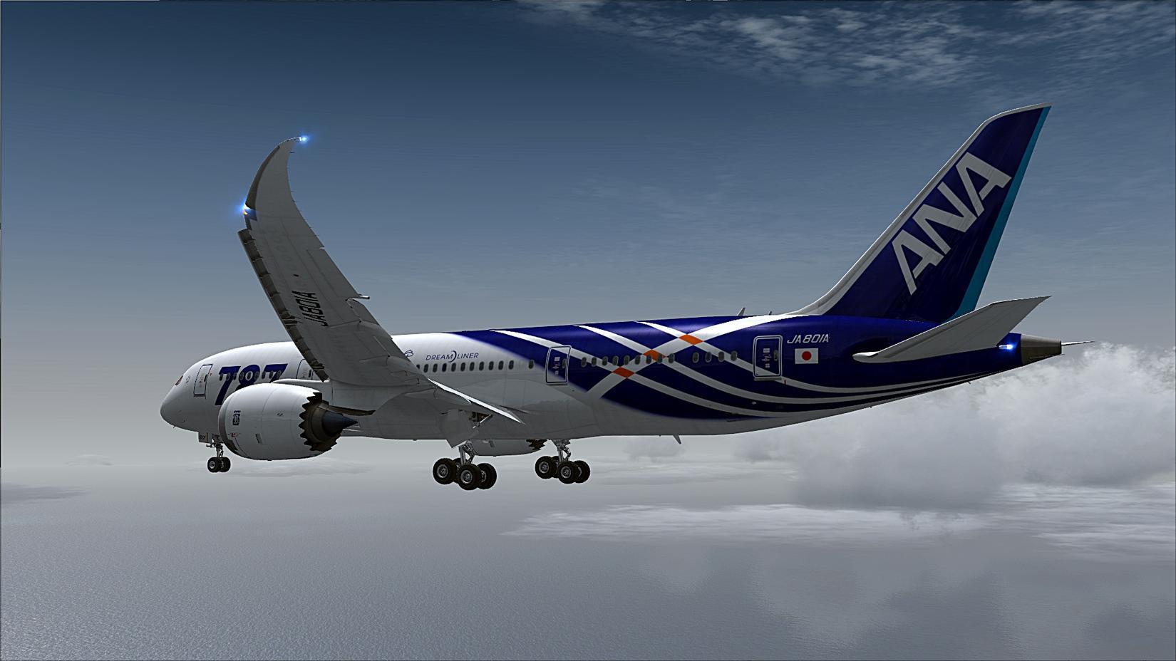Aerosim 787 liveries download