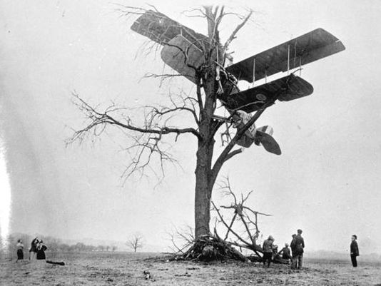 crashedplanein1915    In a Tree.jpg