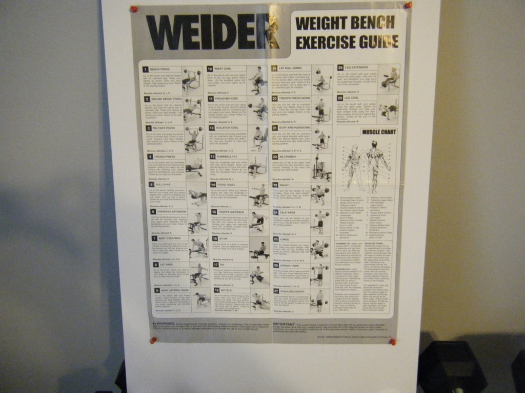 Attached picture Weight_exercises_01.jpg